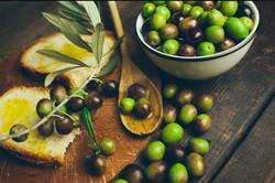 Tour-Olive-Oil