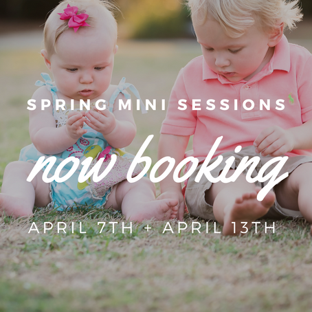 Spring Minis for Make-A-Wish