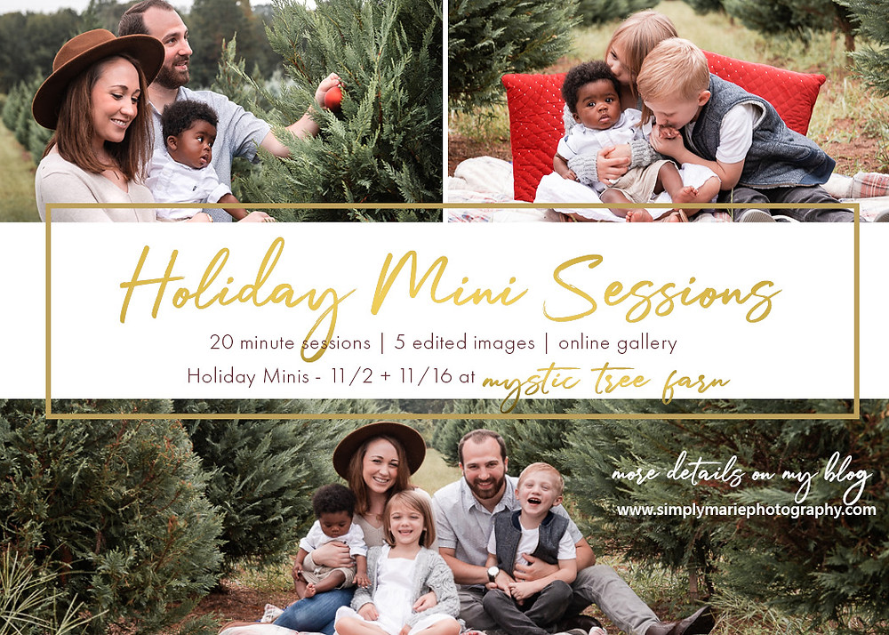 Greenville, SC Photographer, Greenville, Holiday Mini Sessions, Fall Mini Sessions, Christmas Card Photo, Photographer in Greenville, SC Photographer, Tree Farm Photography Greenville