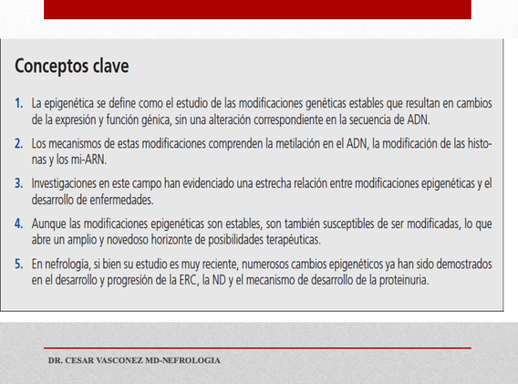 Diapositiva12.png