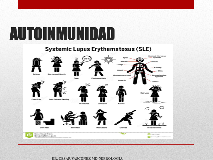 Diapositiva22.png
