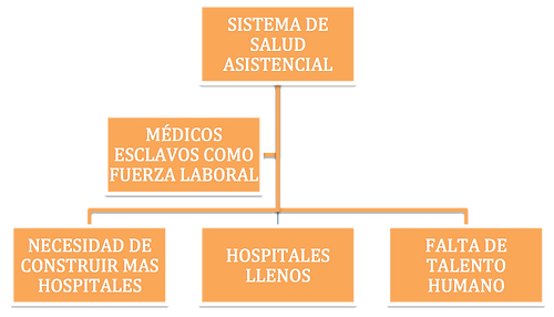 Sistema de salud asistencial