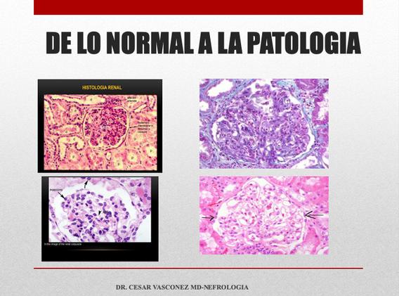 Diapositiva28.png