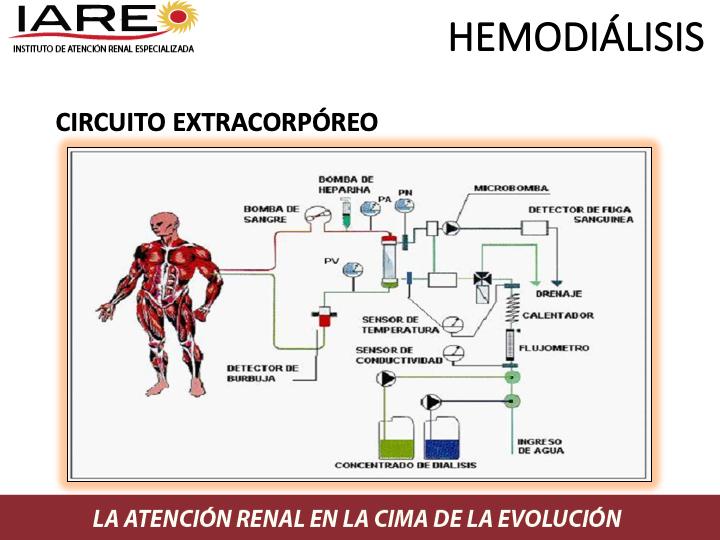 Diapositiva7.png