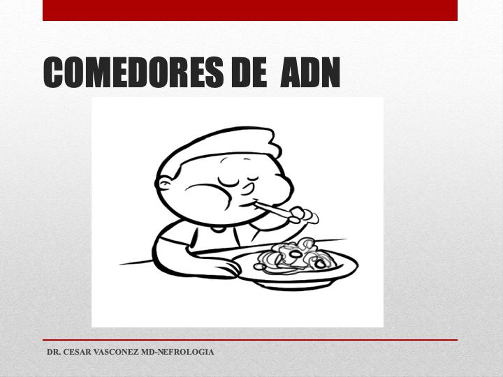 Diapositiva6.png