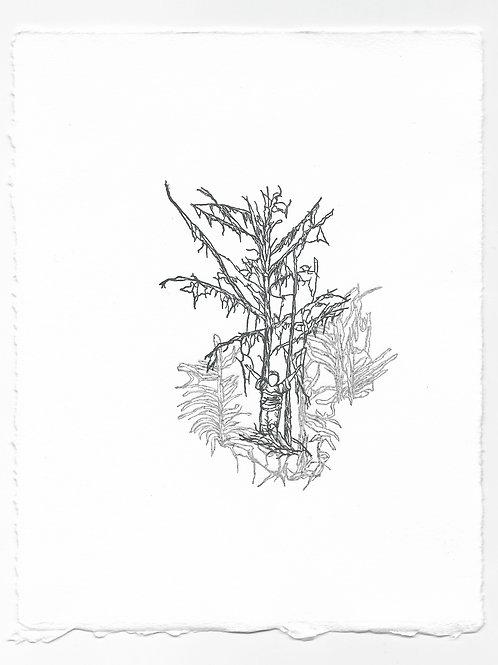 """Imitation"" Relief Print, Variation 4"