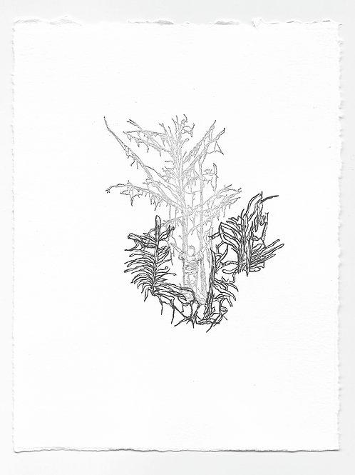 """Imitation"" Relief Print, Variation 3"