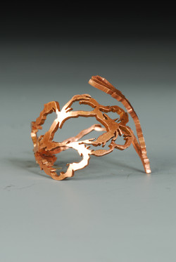 Sketched Lace Ring III (2013)