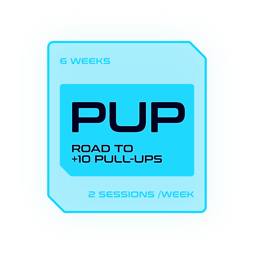 ROAD TO +10 PULL-UPS