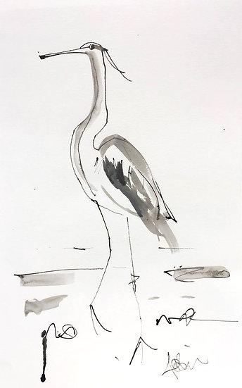Watchful Heron at Aird, Loch Torridon