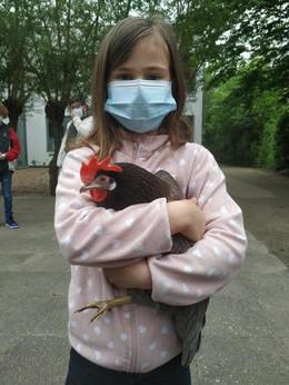 Tierischer Besuch beim HUHN PROJEKT