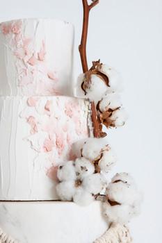 Cotton Close Up