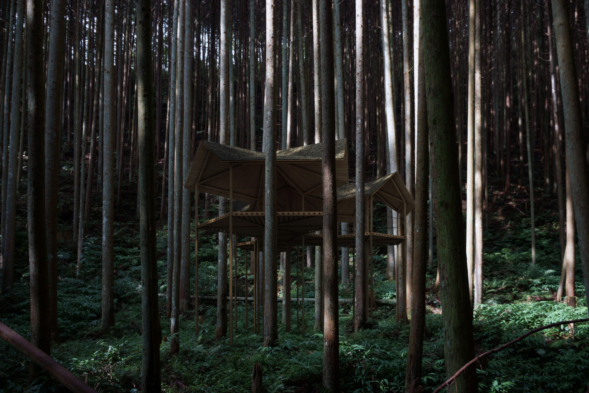 | PJ | nara | tree house | 2012-|