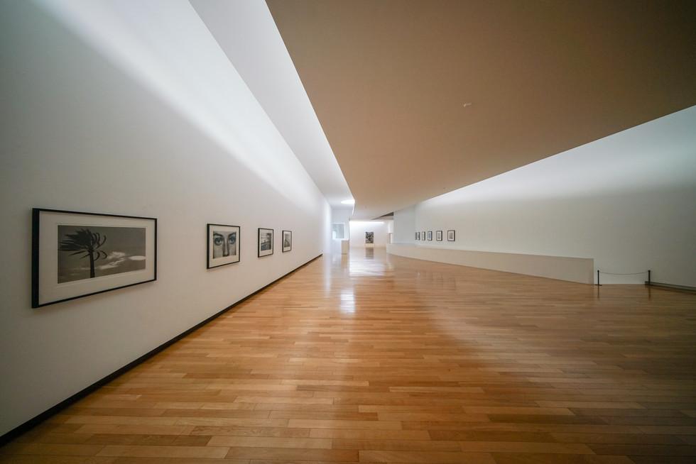 Mimesis Art Museum-12.jpg