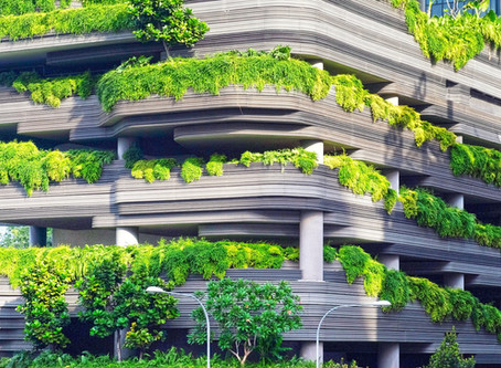 Sustainable Trends in the Architecture Industry
