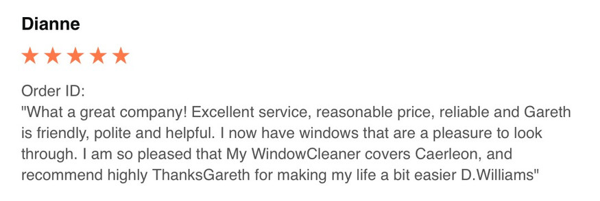 Window cleaner Newport.jpg