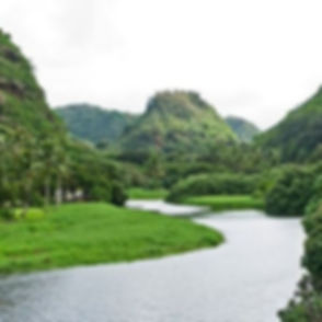 waimea-valley_edited.jpg