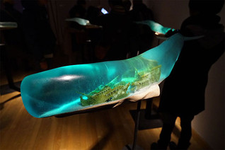 Shipwrecks And Deep Ocean Scenes Encapsulated Inside Translucent Whale Sculptures