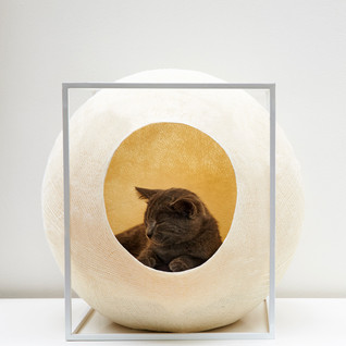 Meyou's cat cocoon furniture collection