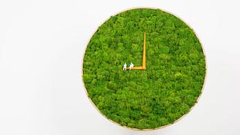 A Moss Clock