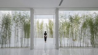 Bamboo Forest on the Roof by V STUDIO