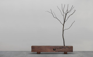 Branch Bench by Udo Lam / Otherwhere  Studio