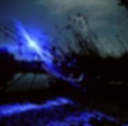 Night-fishing-062.jpg