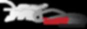 Racing Aces Simulator Zone white logo-01