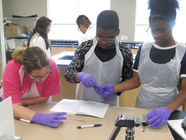 STEMversity lab group working together during experiment