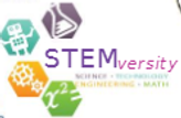 STEMversity Logo 02.png