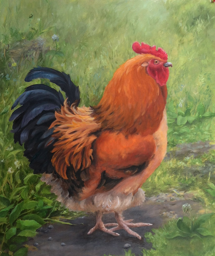 Portrait of a Rooster copy.jpg