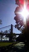 Norman Whaler Gallery _ GW Bridge 2.jpg