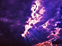 Norman Whaler Gallery Sky 94 normanwhaler.com