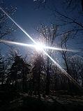 Norman Whaler Gallery _ Winter Sky.jpg