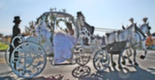 Cinderella carriage ride rental Pa. NY. NJ. MD