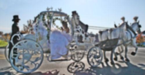 Cinderella carriage ride rental Pa. NY. NJ. MD