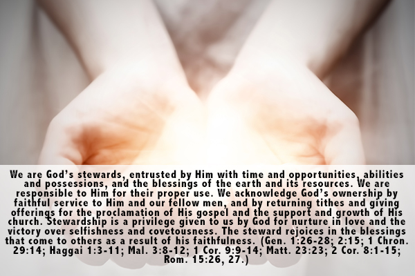 21. Stewardship