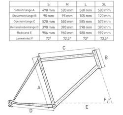 Geometrie_Sione_TRI_Triathlon_bike_carbon_Mountainbike_kaufen_Ironman_Klagenfurt_Villach_Woerthersee