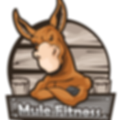 Mule-Fitness-Gray.png