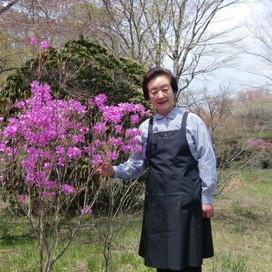 湖畔にミツバツツジを植え続けた岡本光代(おかもと みつよ)さん レストラン「樹の館」オーナー