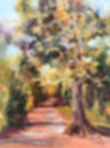 brick pond path.jpg