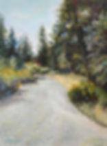 country trail.jpg