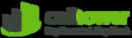 CT-Standard-Logo.png