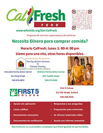 Appt flyer GetCalFresh SP 06.04.2020.jpg