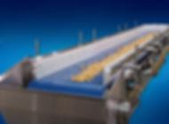 peanut-belt-conveyor--845x625.jpg