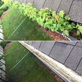 Gutter Cleaning Services Farmington, MN