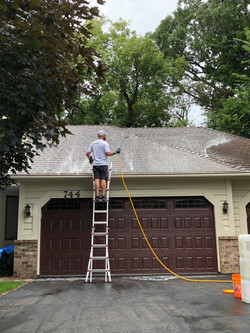 Home Moss, Algae, and Mold Removal