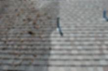 Roof_Cleaning_AppleValley.jpg