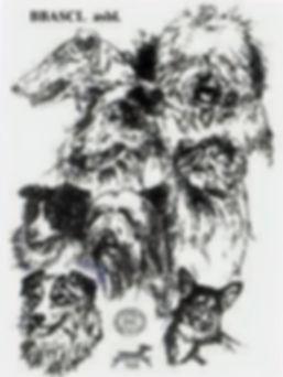 Logo BBASCL