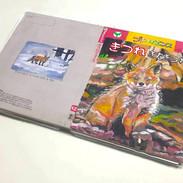 #14 (きつね[きたきつね]), mixed material on paper and cardboard box (acrylic, pencil, color pencil, pen),  30 x 22 x 2cm, 2018 ~ 2019